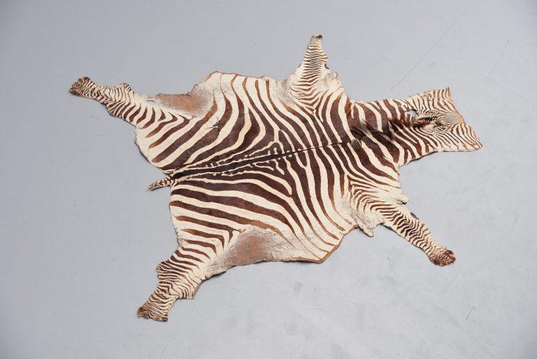 Zebra hide trophy rug Tanzania 1950